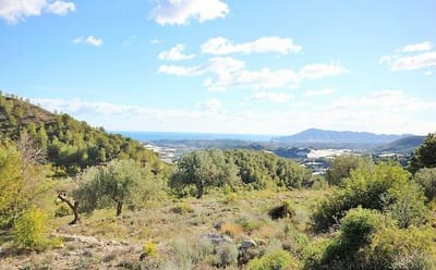 Undeveloped Land for sale in Callosa d'En Sarria - € 99,000 (Ref: 4758841)