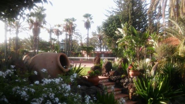 2 soveværelse Villa til leje i Campo Internacional med swimmingpool garage - € 2.500 (Ref: 6038073)