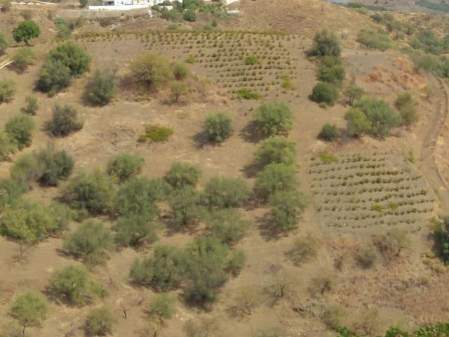 Terrain à Bâtir à vendre à Iznate - 15 000 € (Ref: 4983909)