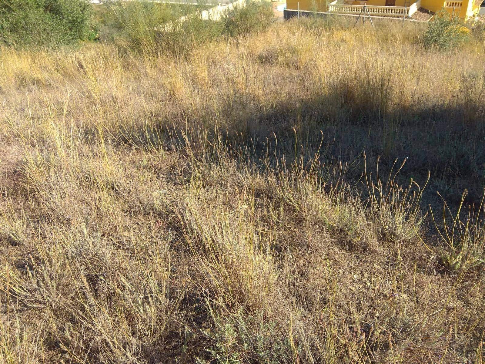Terreno para Construção para venda em Rincon de la Victoria - 90 000 € (Ref: 4983988)