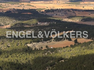 4 bedroom Finca/Country House for sale in Ayora with pool - € 3,900,000 (Ref: 5121418)
