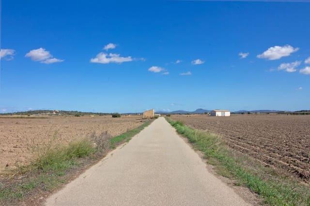 Terreno/Finca Rústica en Vilafranca de Bonany en venta - 105.000 € (Ref: 4856578)