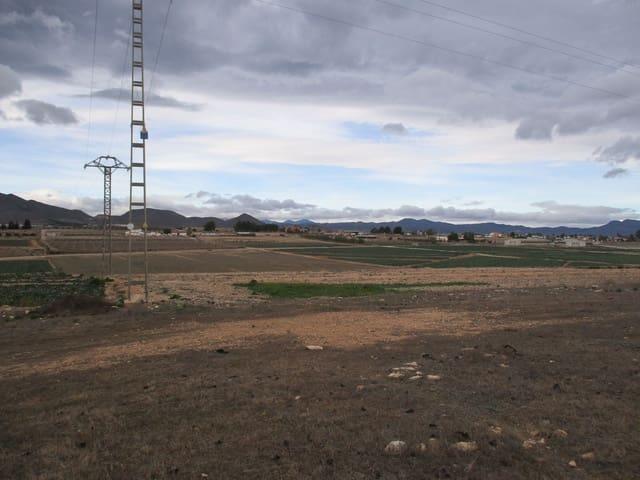 Mark till salu i Lorca - 85 000 € (Ref: 5869826)