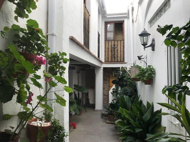 1 makuuhuone Yksiö vuokrattavana paikassa Tarifa - 400 € (Ref: 6237828)