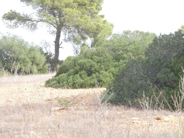 Finca/Landgut zu verkaufen in Cala d'Or - 375.000 € (Ref: 5859744)