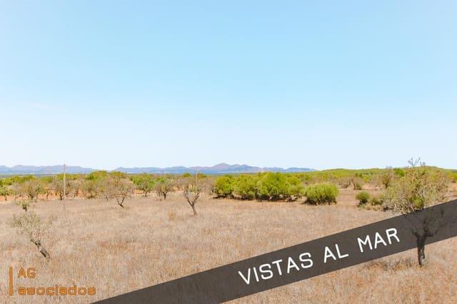 Ubebygd land til salgs i Petra - € 240 000 (Ref: 5523741)