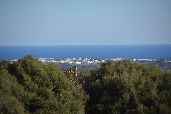 Landgrundstück zu verkaufen in Alqueria Blanca - 1.100.000 € (Ref: 5698191)