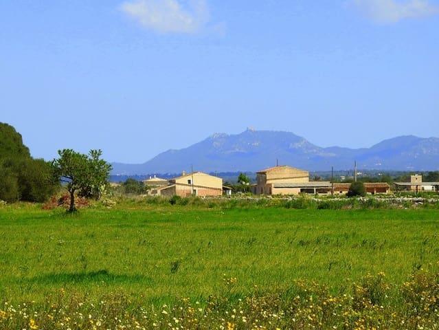 Ubebygd land til salgs i Ses Salines - € 270 000 (Ref: 5698357)