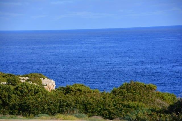Ubebygd land til salgs i Portocolom - € 4 922 831 (Ref: 5698398)