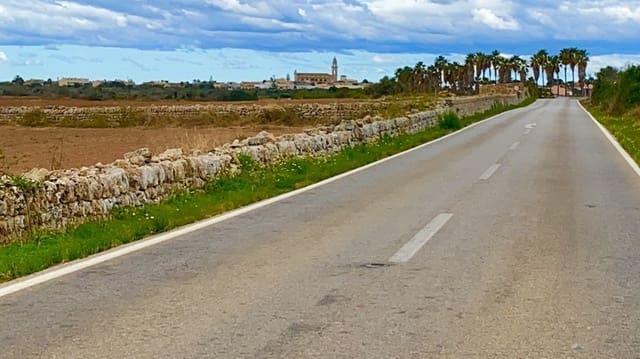 Ubebygd land til salgs i Ses Salines - € 280 000 (Ref: 5698412)