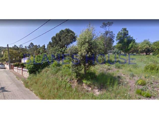 Terre non Aménagée à vendre à Macanet de la Selva - 35 000 € (Ref: 5483675)