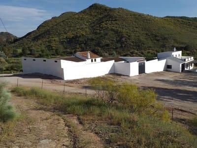 Undeveloped Land for sale in El Saucejo - € 1,600,000 (Ref: 5202960)
