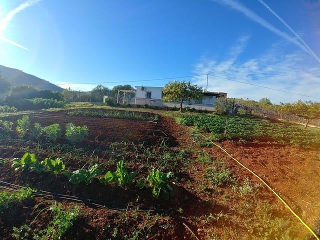 Finca/Casa Rural de 2 habitaciones en Entrerrios en venta - 325.000 € (Ref: 5209908)