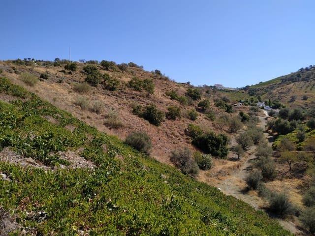Terre non Aménagée à vendre à Iznate - 89 000 € (Ref: 5551462)