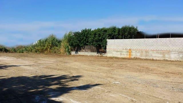Rakentamaton maa vuokrattavana paikassa Las Lagunas de Mijas - 850 € (Ref: 5584209)