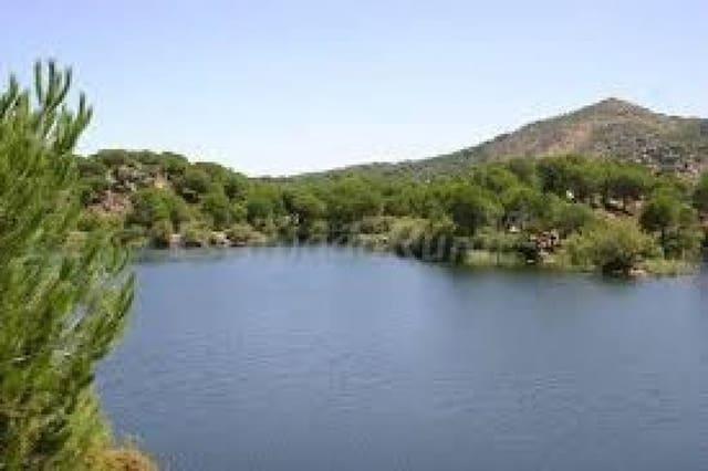 Terre non Aménagée à vendre à Cordoue ville - 78 000 € (Ref: 5624838)