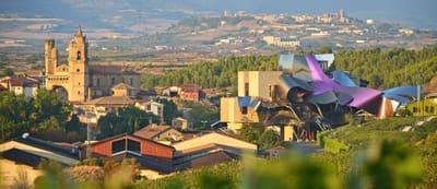 14 slaapkamer Villa te koop in Elciego met garage - € 600.000 (Ref: 5344482)