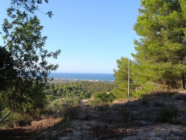 Ubebygd land til salgs i Benimeli - € 75 000 (Ref: 5535739)