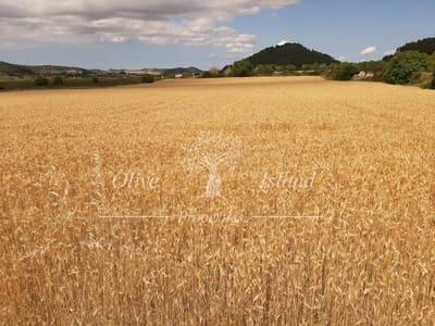 Undeveloped Land for sale in Lloret de Vista Alegre - € 545,000 (Ref: 5462324)
