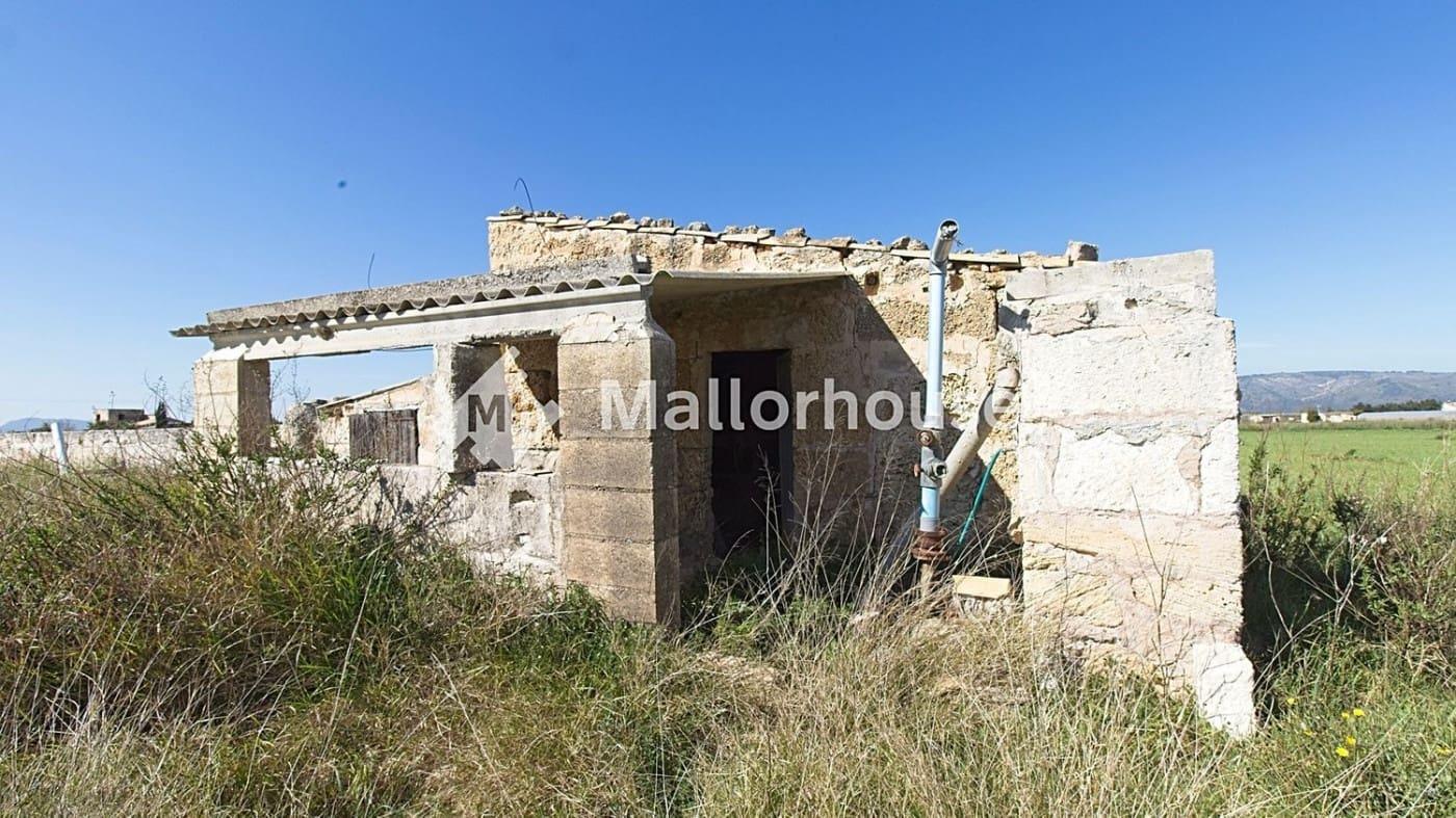 Terreno Não Urbanizado para venda em Muro - 86 000 € (Ref: 6246436)