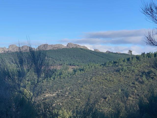 Ruine à vendre à Valencia de Alcantara - 27 000 € (Ref: 5817542)