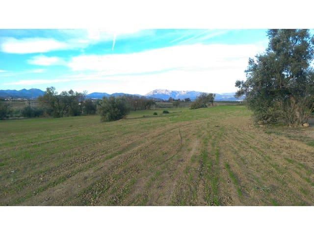 Terreno Non Edificato in vendita in Villafranca del Guadalhorce - 299.000 € (Rif: 5999928)