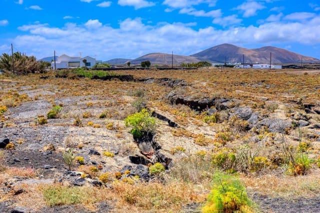 Terre non Aménagée à vendre à El Islote - 95 000 € (Ref: 5892063)