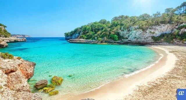 36 makuuhuone Hotelli myytävänä paikassa Playa de Palma - 3 300 000 € (Ref: 5923593)
