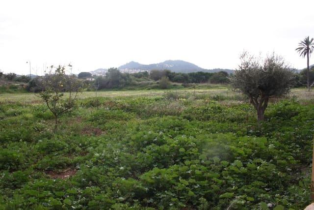 Terre non Aménagée à vendre à Atamaria - 3 000 000 € (Ref: 5980129)