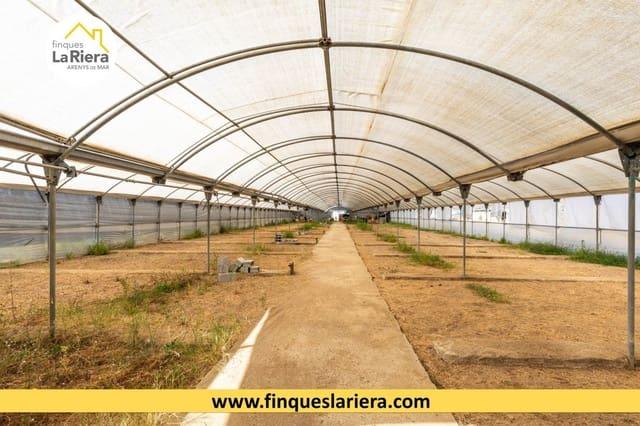 Terreno Não Urbanizado para venda em Arenys de Mar - 225 000 € (Ref: 6178610)