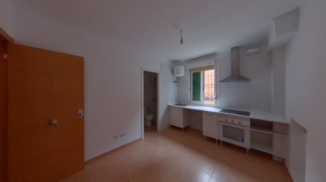 1 soverom Studio til leie i Palma de Mallorca - € 480 (Ref: 6100058)