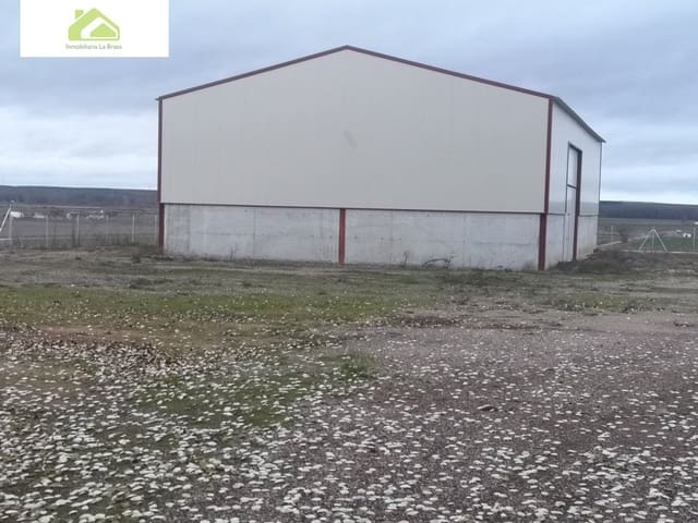 Business for sale in Villaralbo - € 100,000 (Ref: 6124851)