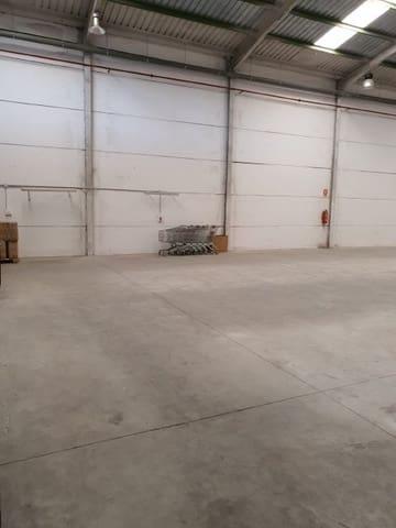 Biznes na sprzedaż w Riba-roja de Turia - 295 000 € (Ref: 6237066)
