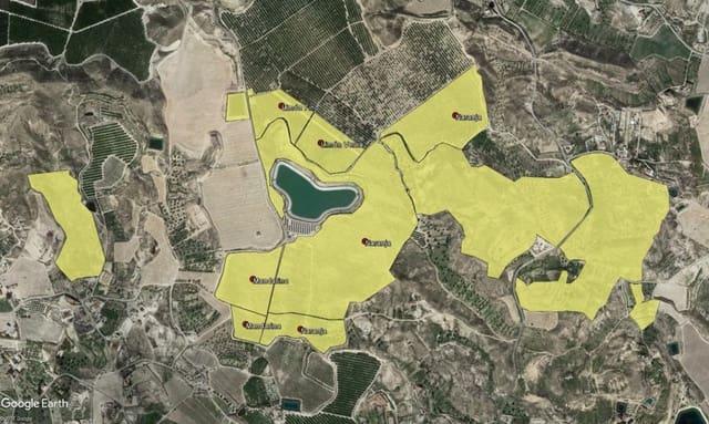 Quinta/Casa Rural para venda em Molina de Segura - 2 200 000 € (Ref: 6297873)