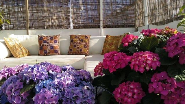 3 sypialnia Dom na sprzedaż w Vejer de la Frontera - 340 000 € (Ref: 6275935)