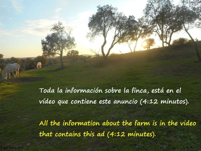 Ubebygd land til salgs i San Vicente de Alcantara - € 52 000 (Ref: 6292591)