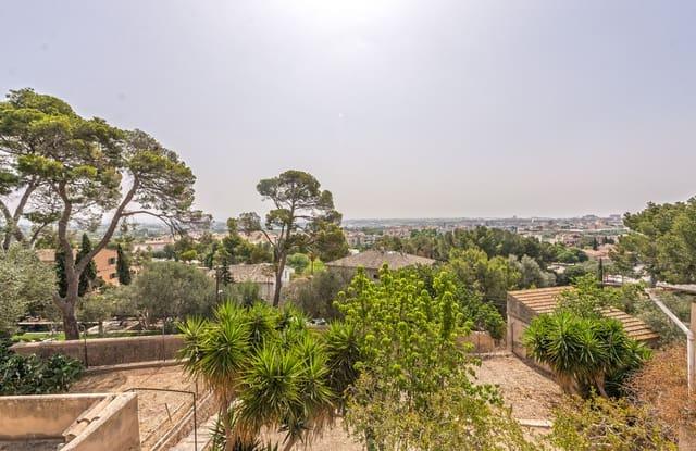 Teren niezagospodarowany na sprzedaż w Palma de Mallorca - 1 065 000 € (Ref: 5171326)