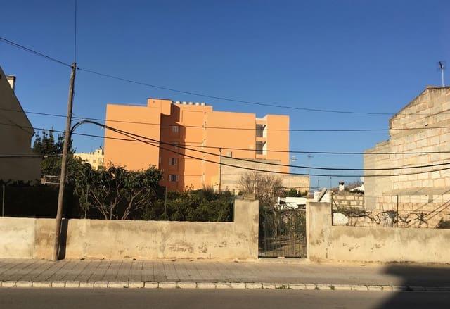 Teren niezagospodarowany na sprzedaż w Inca - 325 000 € (Ref: 5175904)