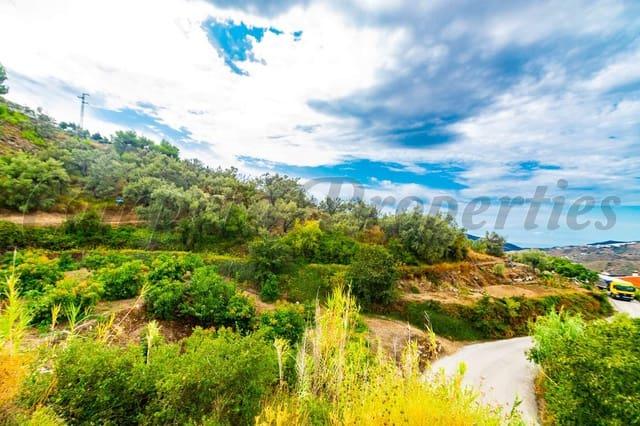 Ubebygd land til salgs i Canillas de Albaida - € 19 000 (Ref: 3635725)