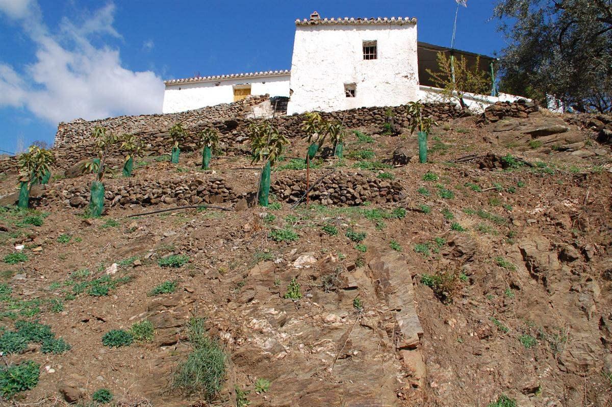 Ruina en Arenas en venta - 168.000 € (Ref: 3779388)