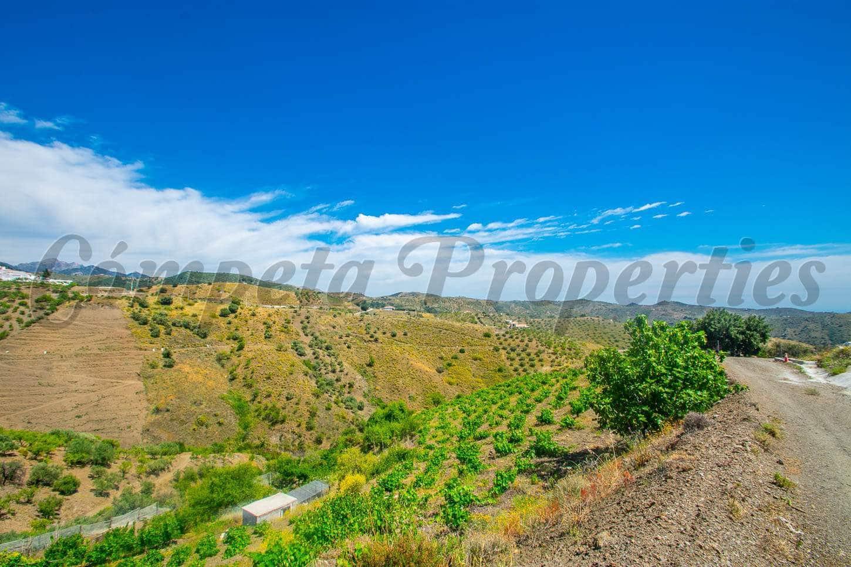 Terre non Aménagée à vendre à Sedella - 15 000 € (Ref: 4616686)