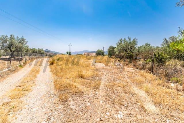 Terreno Non Edificato in vendita in Competa - 30.000 € (Rif: 4688614)
