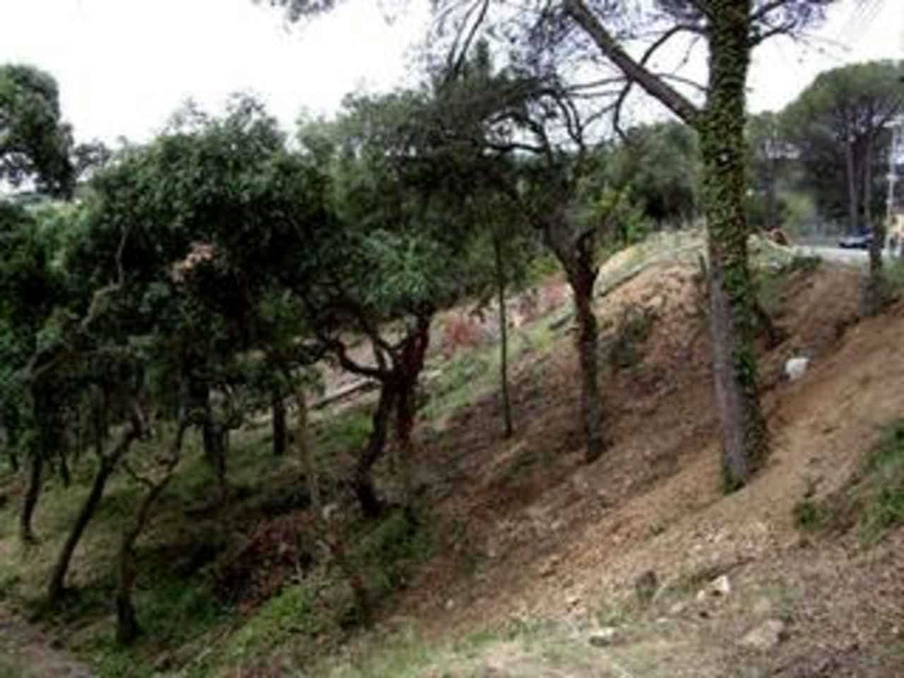 Undeveloped Land for sale in Calonge - € 90,000 (Ref: 1948558)