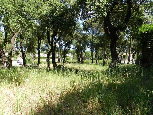 Terre non Aménagée à vendre à Platja d'Aro - 190 000 € (Ref: 3453939)