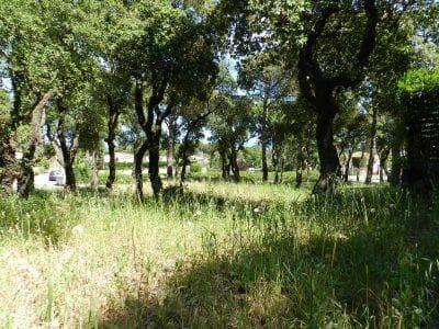 Ubebygd land til salgs i Castell d'Aro - € 190 000 (Ref: 5274079)