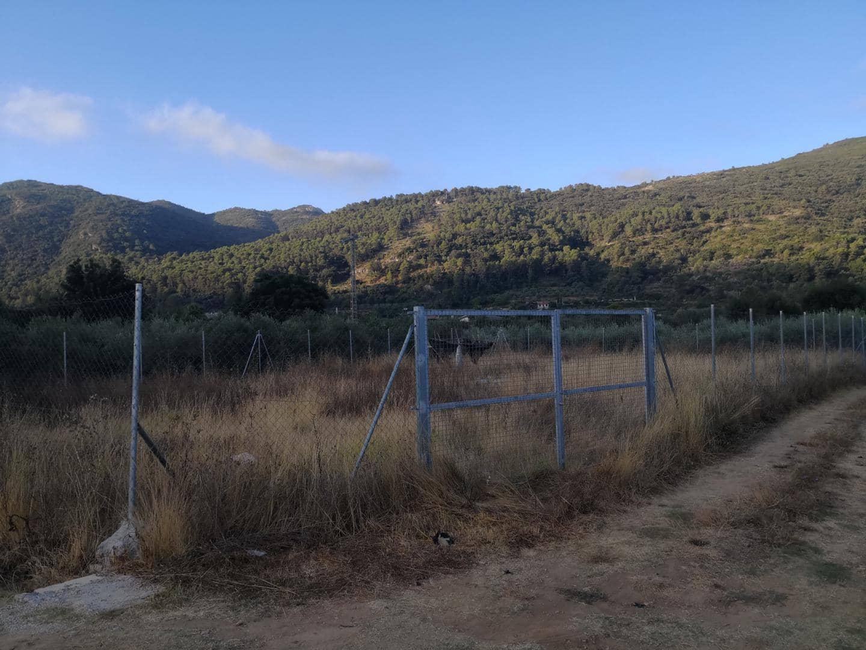 Ubebygd land til salgs i Barx - € 12 000 (Ref: 5811732)