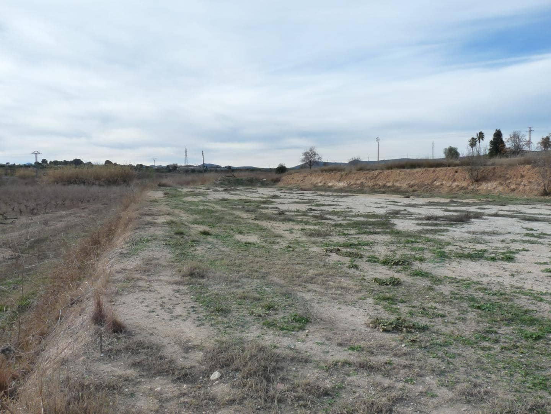 Grunde uden byggetilladelser til salg i Alfarrasi - € 29.000 (Ref: 5891878)