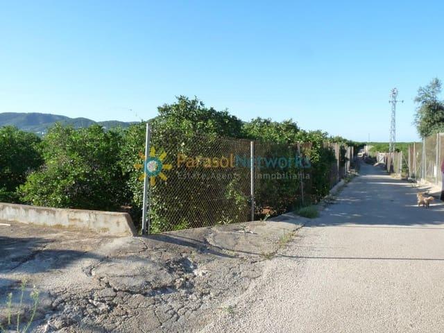 Landgrundstück zu verkaufen in Oliva - 100.000 € (Ref: 6369428)
