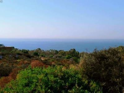 Building Plot for sale in San Roque - € 80,000 (Ref: 5401196)