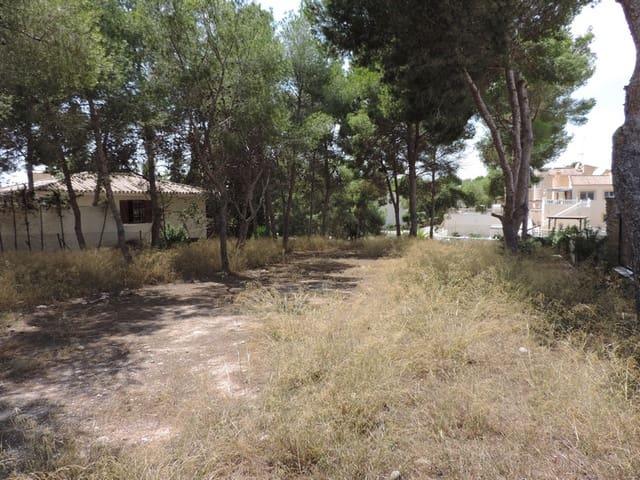 Landgrundstück zu verkaufen in Pinar de Campoverde - 100.000 € (Ref: 4747346)